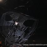 Cestovatelské přednášky - Brazílie - Pavouk